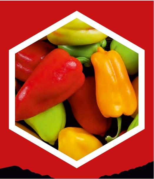 produkcia-paprika