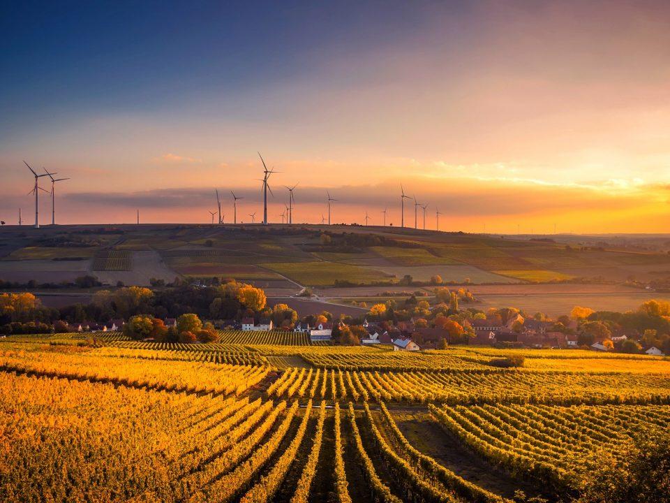 ekologicke polnohospodarstvo
